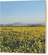 Table Mountain At The Horizon Wood Print