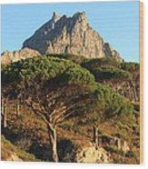 Table Mountain View Wood Print