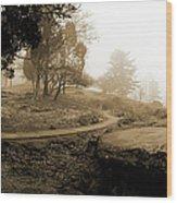 Table Rock Gettysburg Wood Print