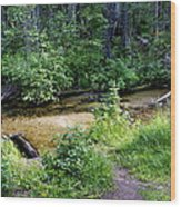 Tacoma Creek 1 Wood Print