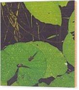 Tadpoles Wood Print
