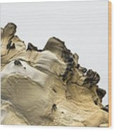 Tafoni Wings With Seagulls Wood Print
