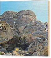 Tagged Rocks Wood Print