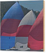 Tahoe Chutes Wood Print