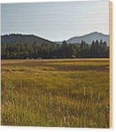 Tahoe Keys Meadow Wood Print
