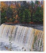 Tahquamenon Falls I Wood Print