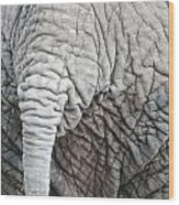Tail Of African Elephant Wood Print
