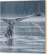 Tail Of Humpback Whale Wood Print