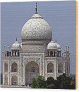 Taj Mahal - Agra - India  Wood Print