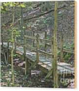 Take A Hike Wood Print