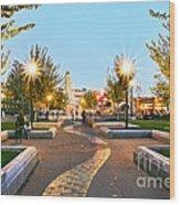 Take A Walk Downtown  Wood Print