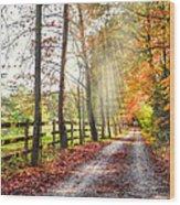 Take The Back Roads Wood Print