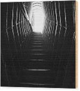 Take The Stairs. Wood Print