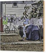 Taking Out The Garbage - Sarasota - Florida Wood Print