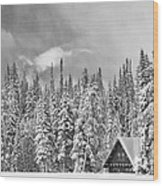 Taking Refuge - Grand Teton Wood Print by Sandra Bronstein
