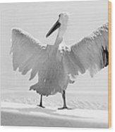 Taking The Plunge - Pelican - Bathroom Wood Print