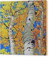 Tall Aspen Trees Wood Print