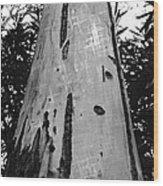 Tall Wood Print