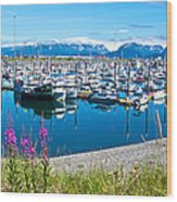 Tall Fireweed By The Marina Along Homer Spit-ak  Wood Print