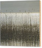 Tall Grass On Lough Eske - Donegal Ireland Wood Print