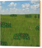 Tall Grass Prairie National Reserve Wood Print
