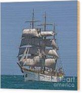 Tall Ship Mircea Wood Print