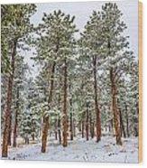 Tall Snowy Pines Wood Print