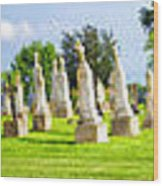 Tall Tombstones Panorama Wood Print by Thomas Woolworth