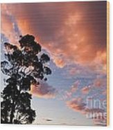 Tall Tree Against A Dramatic Sunset Clouds Sky Wood Print
