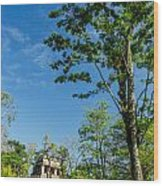 Tall Tree And Temple Wood Print