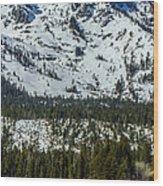 Tallac View Wood Print