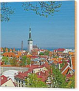 Tallinn From Plaza In Upper Old Town-estonia Wood Print
