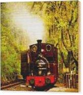 Talyllyn Railway 2 Wood Print