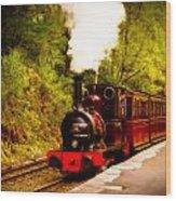 Talyllyn Railway 4 Wood Print