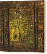 Tamarac Boardwalk Wood Print