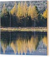 Tamarack Reflections Wood Print
