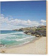 Tamarama Beach Beach In Sydney Australia Wood Print