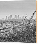 Tampa Across The Bay Wood Print