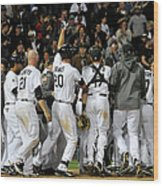 Tampa Bay Rays V Chicago White Sox Wood Print