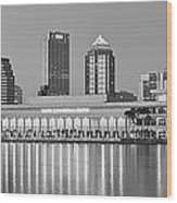 Tampa Panorama Wood Print