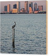 Tampa Skyline And Pelican Wood Print