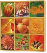 Tangerine Dream Window Wood Print by Joan-Violet Stretch