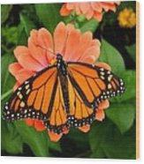 Tangerine Twosome Wood Print
