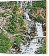 Tangle Falls Along Icefield Parkway In Alberta Wood Print