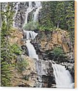 Tangle Falls Tumble Wood Print