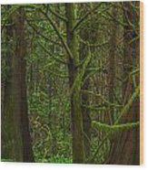 Tangled Forest Wood Print