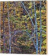 Tangled Tennessee Wood Print