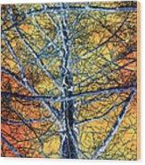 Tangled Web 2 Wood Print