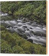 Tanner Creek Wood Print