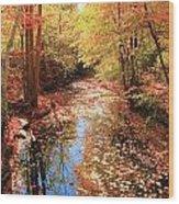 Tanners Brook Wood Print
